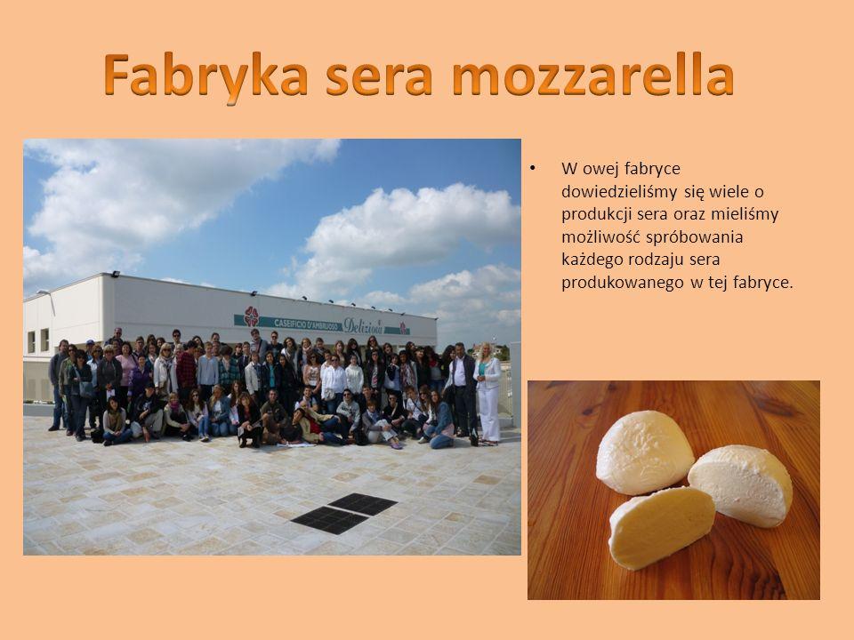 W owej fabryce dowiedzieliśmy się wiele o produkcji sera oraz mieliśmy możliwość spróbowania każdego rodzaju sera produkowanego w tej fabryce.