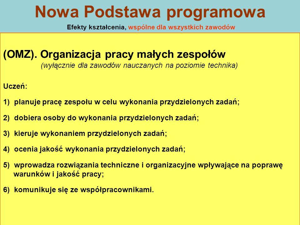 (OMZ). Organizacja pracy małych zespołów (wyłącznie dla zawodów nauczanych na poziomie technika) Uczeń: 1) planuje pracę zespołu w celu wykonania przy
