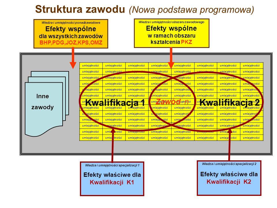 Struktura zawodu (Nowa podstawa programowa) umiejętności Inne zawody Wiedza i umiejętności specjalizacji 1 Efekty właściwe dla Kwalifikacji K1 Wiedza i umiejętności specjalizacji 2 Efekty właściwe dla Kwalifikacji K2 Wiedza i umiejętności obszaru zawodowego Efekty wspólne w ramach obszaru kształcenia PKZ Wiedza i umiejętności ponadzawodowe Efekty wspólne dla wszystkich zawodów BHP,PDG,JOZ,KPS,OMZ Kwalifikacja 1 Kwalifikacja 2 Zawód n