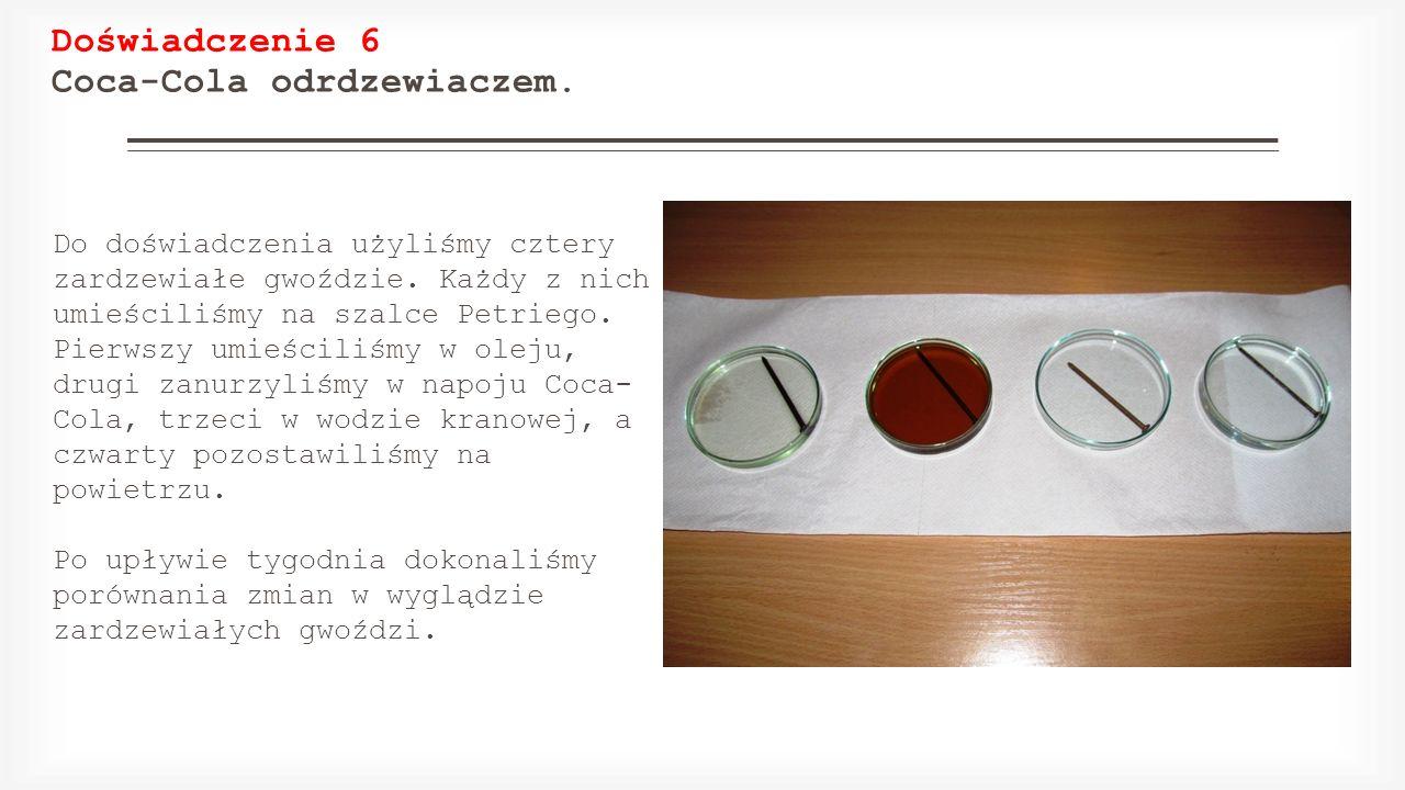 Doświadczenie 6 Coca-Cola odrdzewiaczem. Do doświadczenia użyliśmy cztery zardzewiałe gwoździe. Każdy z nich umieściliśmy na szalce Petriego. Pierwszy