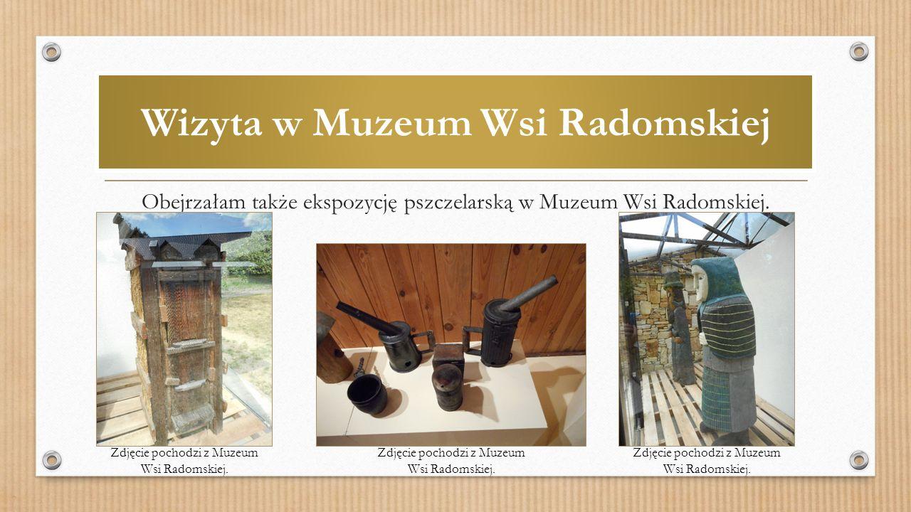 Wizyta w Muzeum Wsi Radomskiej Obejrzałam także ekspozycję pszczelarską w Muzeum Wsi Radomskiej.