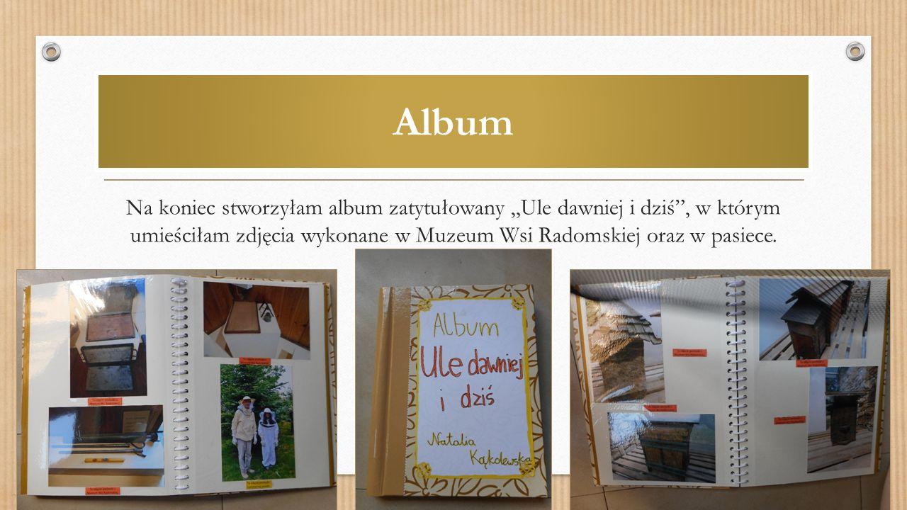 """Album Na koniec stworzyłam album zatytułowany """"Ule dawniej i dziś , w którym umieściłam zdjęcia wykonane w Muzeum Wsi Radomskiej oraz w pasiece."""