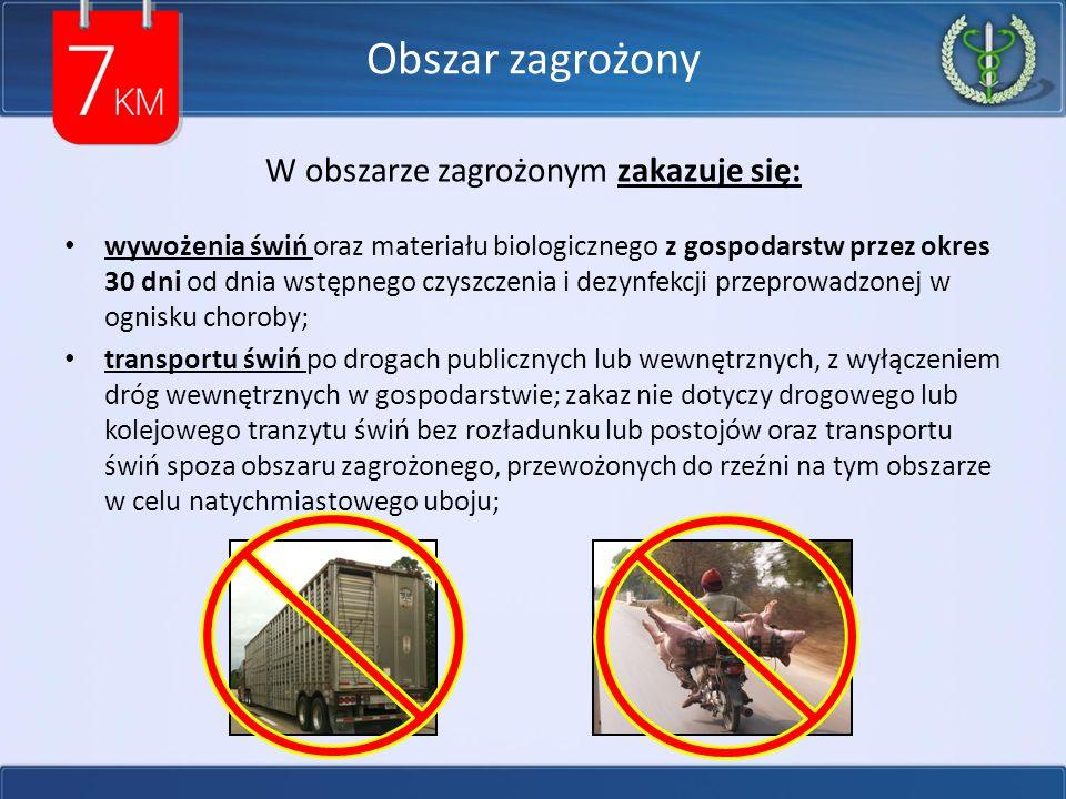 Obszar zagrożony W obszarze zagrożonym zakazuje się: wywożenia świń oraz materiału biologicznego z gospodarstw przez okres 30 dni od dnia wstępnego czyszczenia i dezynfekcji przeprowadzonej w ognisku choroby; transportu świń po drogach publicznych lub wewnętrznych, z wyłączeniem dróg wewnętrznych w gospodarstwie; zakaz nie dotyczy drogowego lub kolejowego tranzytu świń bez rozładunku lub postojów oraz transportu świń spoza obszaru zagrożonego, przewożonych do rzeźni na tym obszarze w celu natychmiastowego uboju;