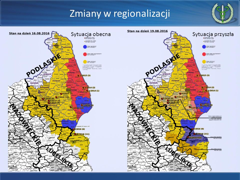 Zmiany w regionalizacji Sytuacja obecnaSytuacja przyszła