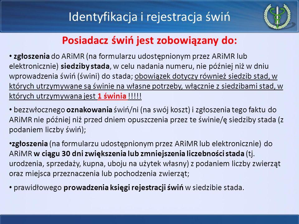 Identyfikacja i rejestracja świń Posiadacz świń jest zobowiązany do: zgłoszenia do ARiMR (na formularzu udostępnionym przez ARiMR lub elektronicznie) siedziby stada, w celu nadania numeru, nie później niż w dniu wprowadzenia świń (świni) do stada; obowiązek dotyczy również siedzib stad, w których utrzymywane są świnie na własne potrzeby, włącznie z siedzibami stad, w których utrzymywana jest 1 świnia !!!!.