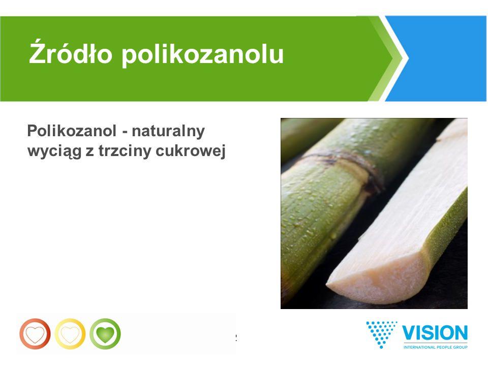 32 Polikozanol - naturalny wyciąg z trzciny cukrowej Źródło polikozanolu