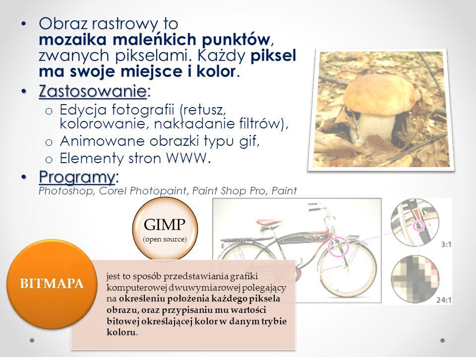 Bibliografia Pańczyk, J., 2012, Informatyka Europejczyka.