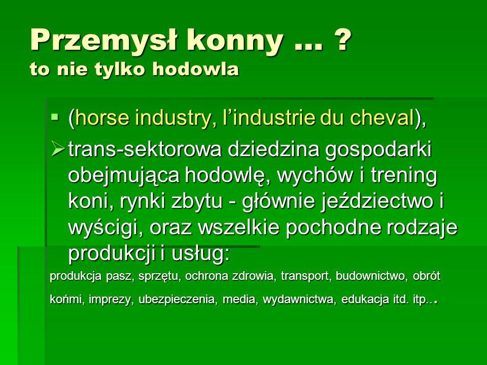 Przemysł konny … .