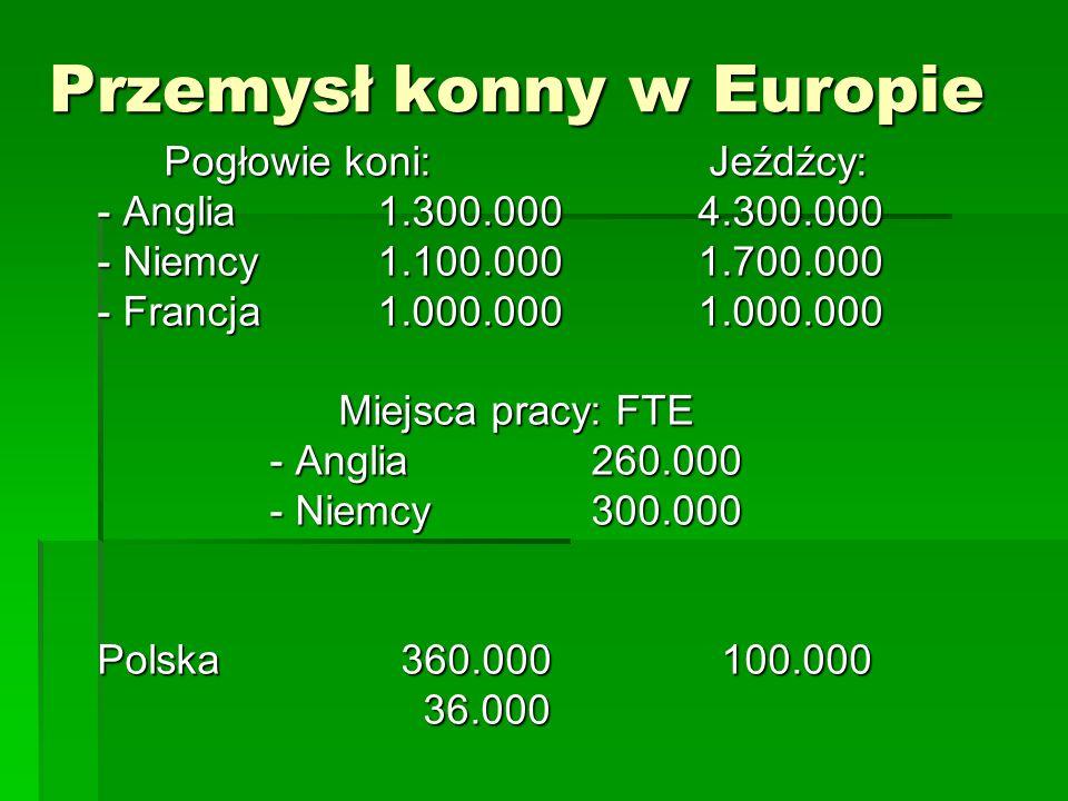 Przemysł konny w Europie Pogłowie koni: Jeźdźcy: - Anglia1.300.0004.300.000 - Niemcy1.100.0001.700.000 - Francja1.000.0001.000.000 Miejsca pracy: FTE Miejsca pracy: FTE - Anglia260.000 - Anglia260.000 - Niemcy300.000 - Niemcy300.000 Polska 360.000 100.000 36.000 36.000