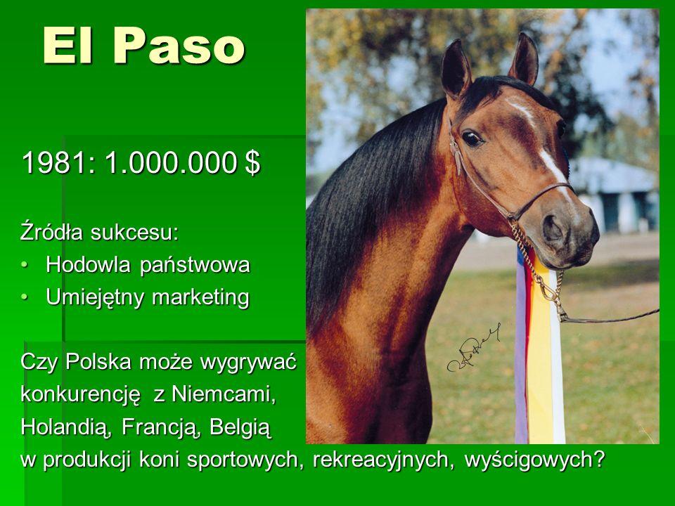El Paso 1981: 1.000.000 $ Źródła sukcesu: Hodowla państwowaHodowla państwowa Umiejętny marketingUmiejętny marketing Czy Polska może wygrywać konkurencję z Niemcami, Holandią, Francją, Belgią w produkcji koni sportowych, rekreacyjnych, wyścigowych