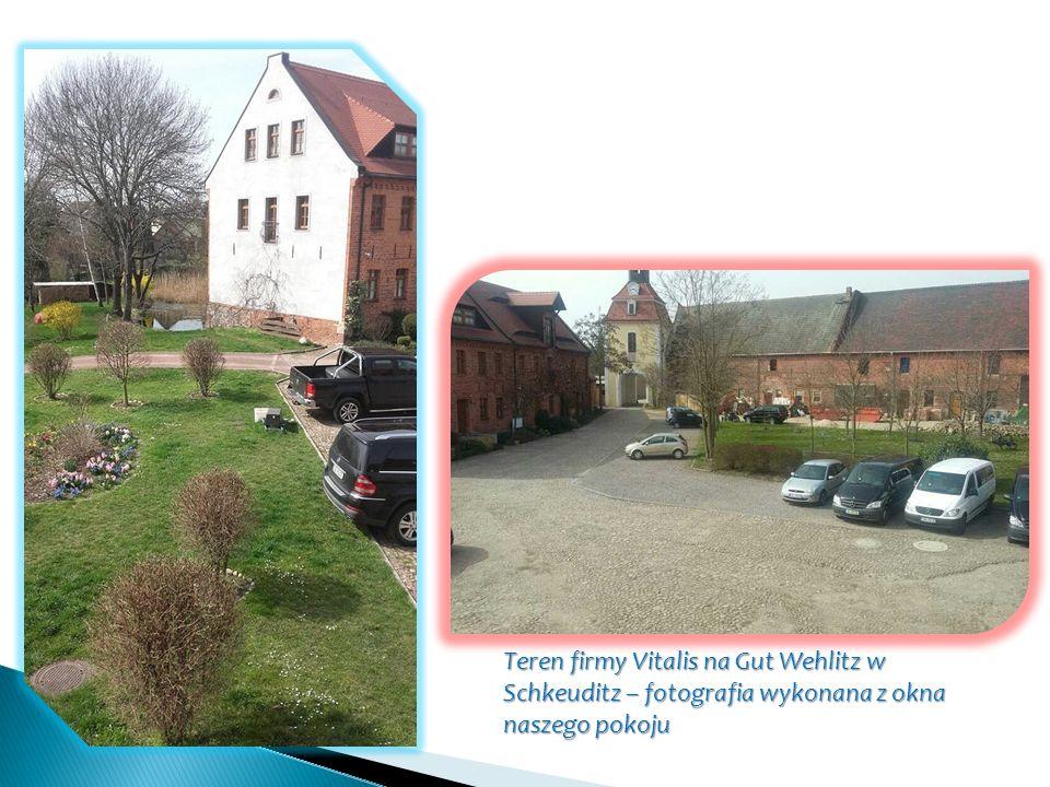 Teren firmy Vitalis na Gut Wehlitz w Schkeuditz – fotografia wykonana z okna naszego pokoju