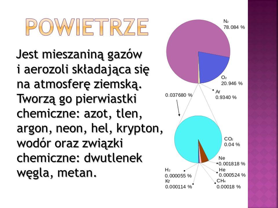 Zofia Jasińska Anna Kapuścińska Aleksandra Kaźmierska Agata Przedpełska Ewa Zakrzewska