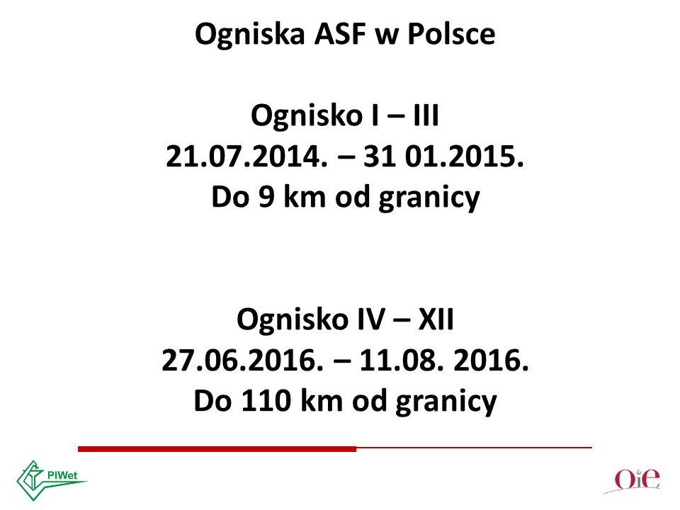 Ogniska ASF w Polsce Ognisko I – III 21.07.2014. – 31 01.2015.