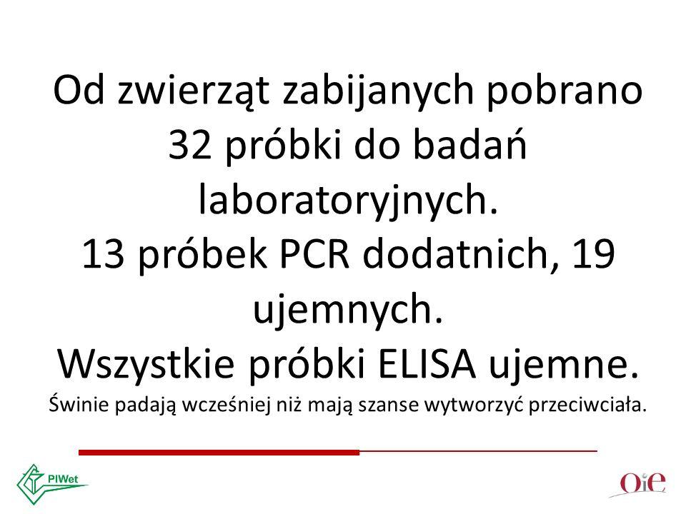 Od zwierząt zabijanych pobrano 32 próbki do badań laboratoryjnych.