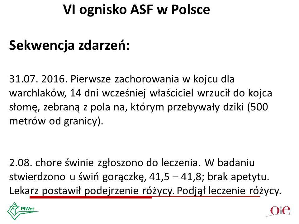 VI ognisko ASF w Polsce Sekwencja zdarzeń: 31.07. 2016.
