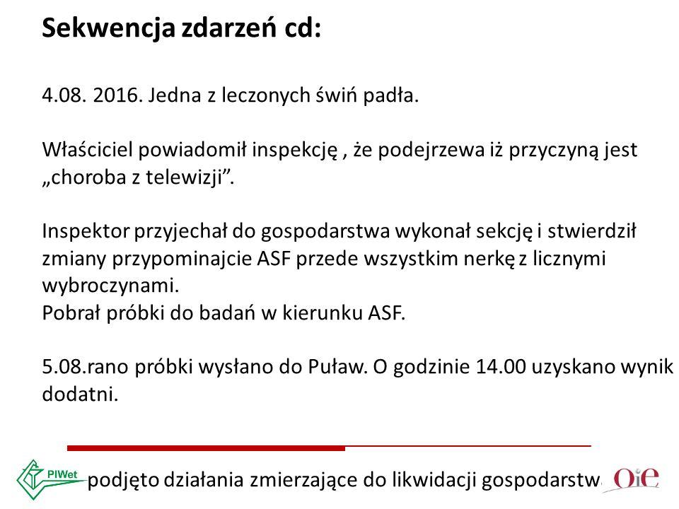 Sekwencja zdarzeń cd: 4.08. 2016. Jedna z leczonych świń padła.