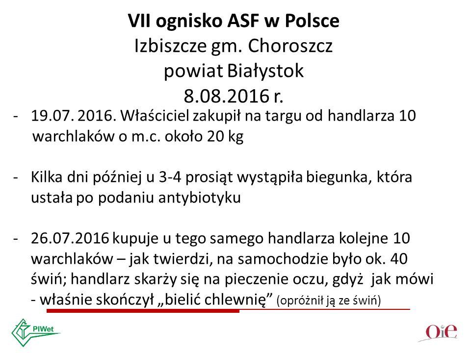 VII ognisko ASF w Polsce Izbiszcze gm. Choroszcz powiat Białystok 8.08.2016 r.