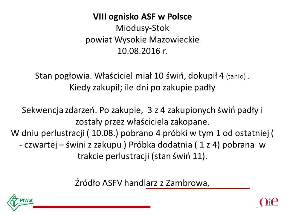 VIII ognisko ASF w Polsce Miodusy-Stok powiat Wysokie Mazowieckie 10.08.2016 r.