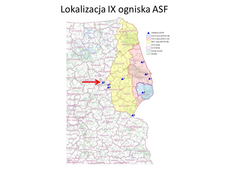 Lokalizacja IX ogniska ASF
