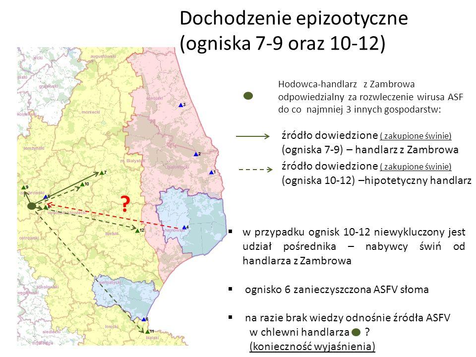 Dochodzenie epizootyczne (ogniska 7-9 oraz 10-12) źródło dowiedzione ( zakupione świnie) (ogniska 7-9) – handlarz z Zambrowa źródło dowiedzione ( zakupione świnie) (ogniska 10-12) –hipotetyczny handlarz Hodowca-handlarz z Zambrowa odpowiedzialny za rozwleczenie wirusa ASF do co najmniej 3 innych gospodarstw:  w przypadku ognisk 10-12 niewykluczony jest udział pośrednika – nabywcy świń od handlarza z Zambrowa  ognisko 6 zanieczyszczona ASFV słoma  na razie brak wiedzy odnośnie źródła ASFV w chlewni handlarza .