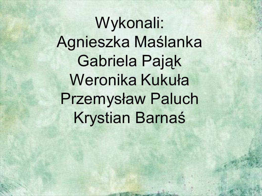 Wykonali: Agnieszka Maślanka Gabriela Pająk Weronika Kukuła Przemysław Paluch Krystian Barnaś