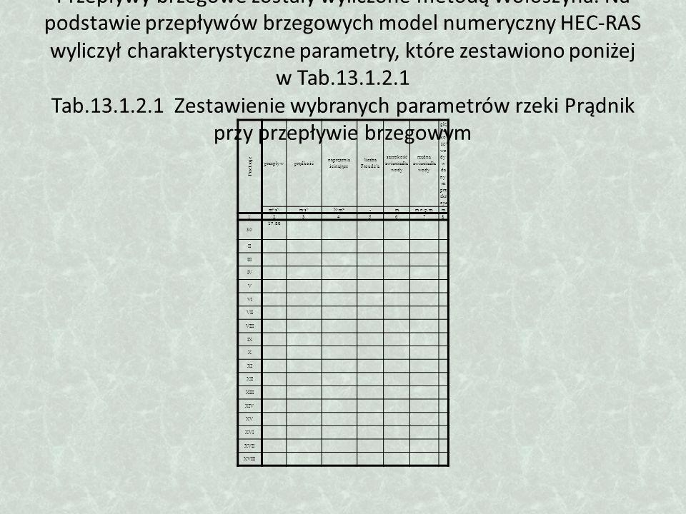 Przepływy brzegowe zostały wyliczone metodą Wołoszyna. Na podstawie przepływów brzegowych model numeryczny HEC-RAS wyliczył charakterystyczne parametr