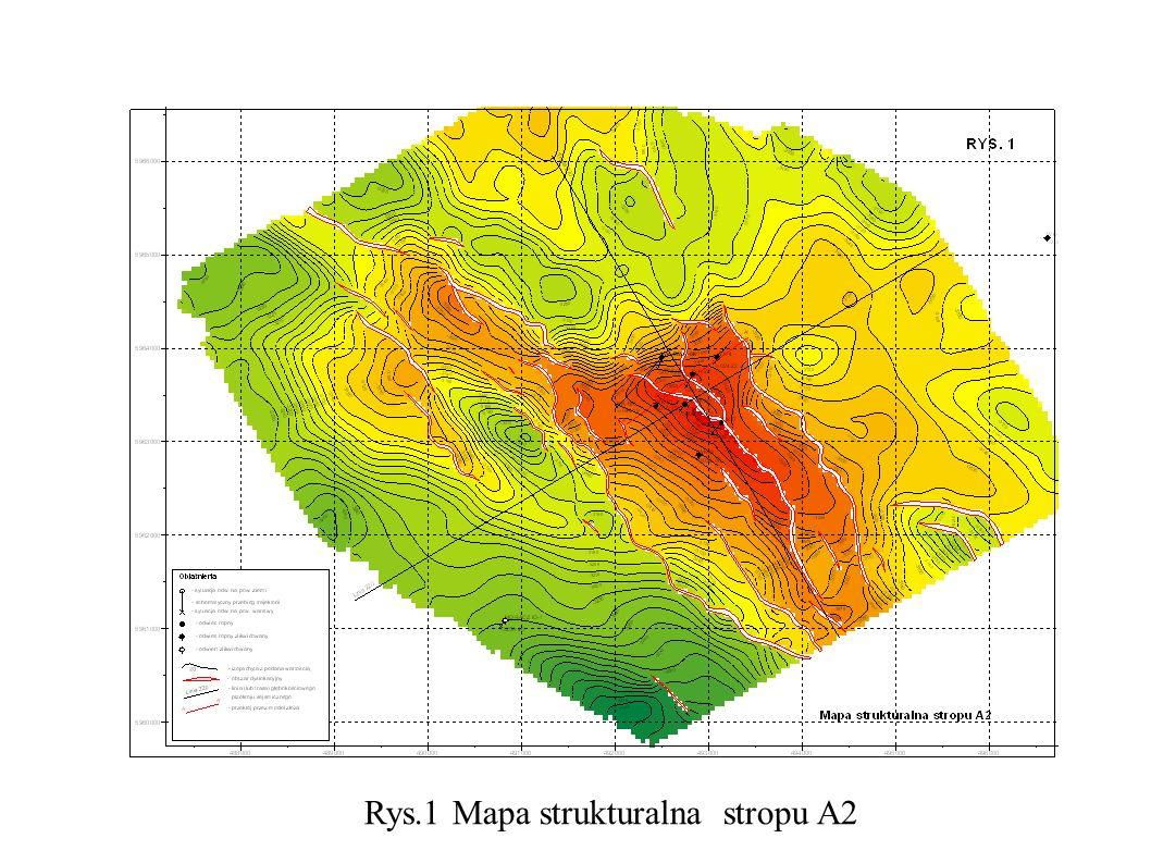 Rys.1 Mapa strukturalna stropu A2