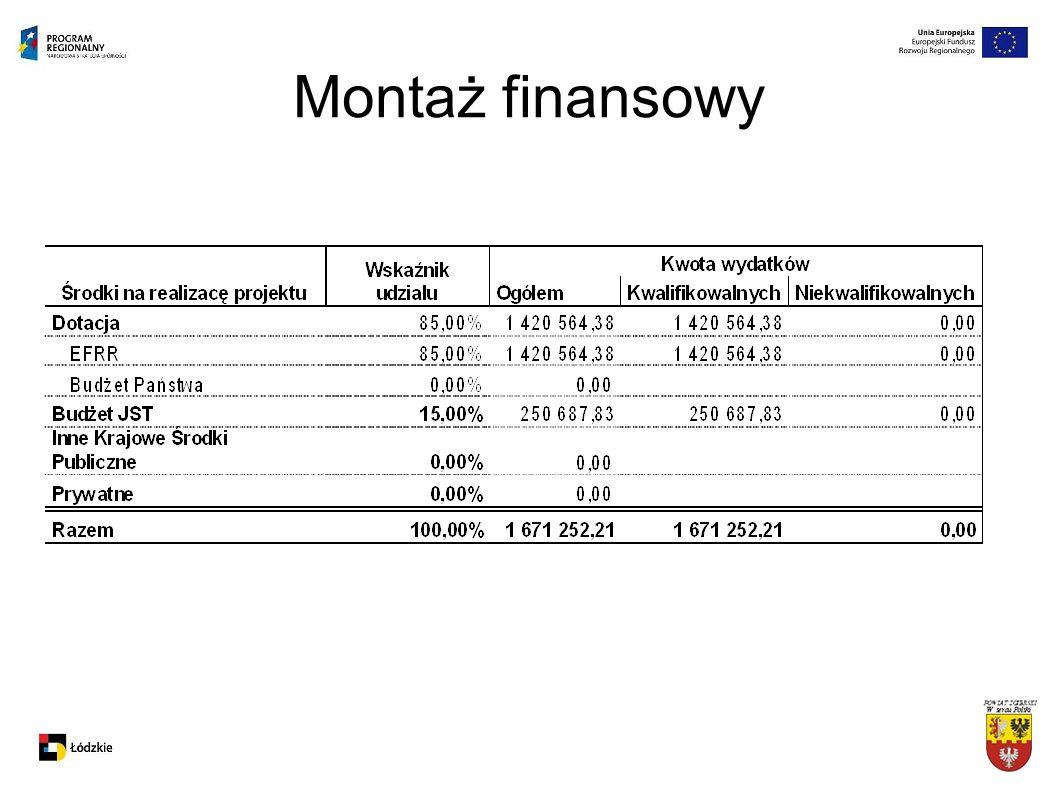 Montaż finansowy Na podstawie umowy nr UDA-RPLD.04.02.00-00-023/08-00 z dnia 24 listopada 2008 r.