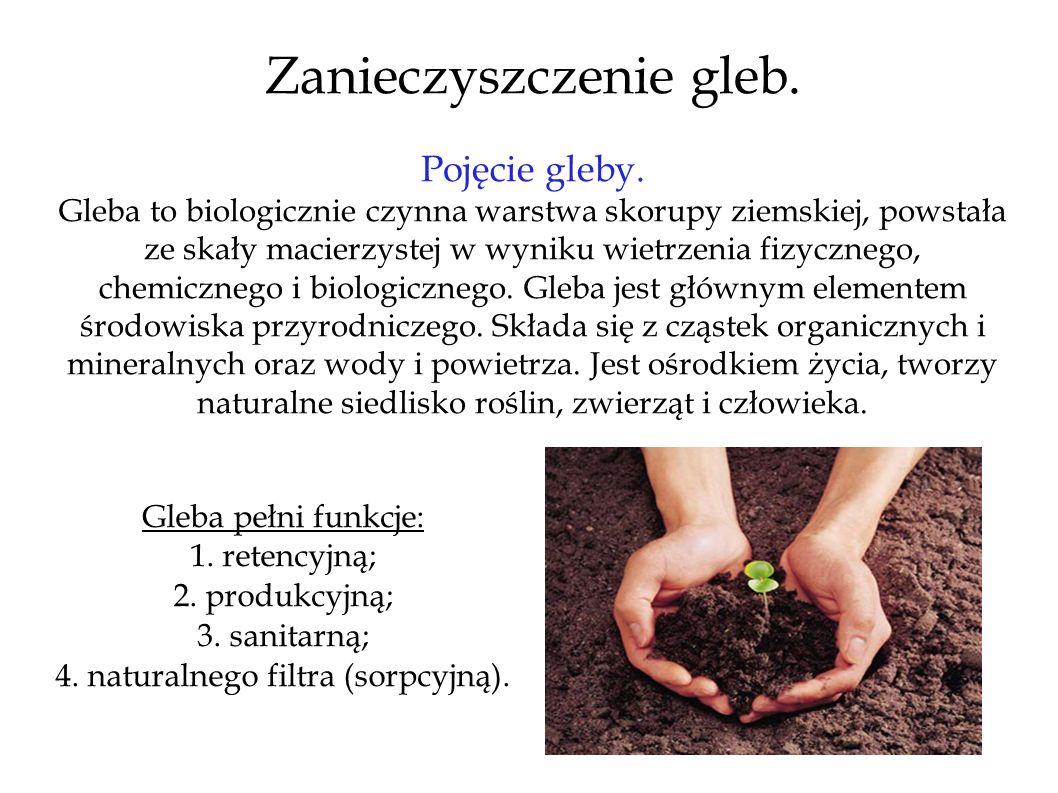 Zanieczyszczenie gleb. Pojęcie gleby. Gleba to biologicznie czynna warstwa skorupy ziemskiej, powstała ze skały macierzystej w wyniku wietrzenia fizyc