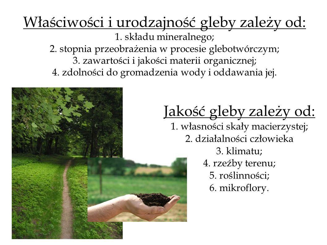 Właściwości i urodzajność gleby zależy od: 1. składu mineralnego; 2. stopnia przeobrażenia w procesie glebotwórczym; 3. zawartości i jakości materii o
