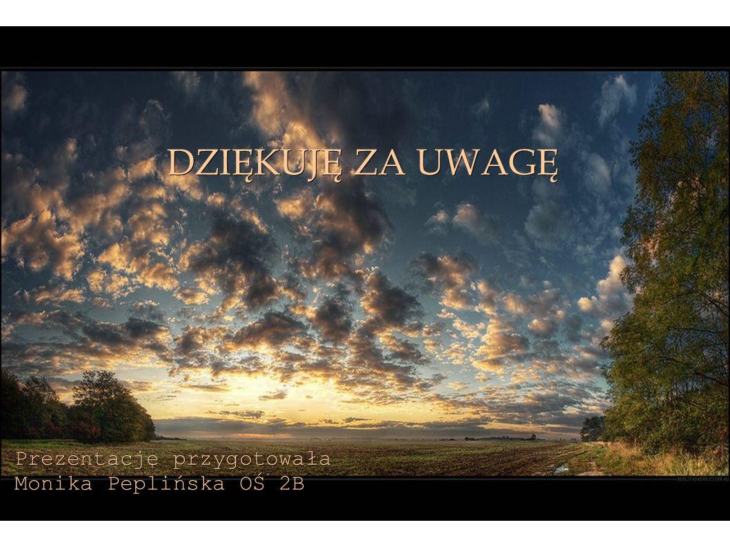DZIĘKUJĘ ZA UWAGĘ Prezentację przygotowała Monika Peplińska OŚ 2B