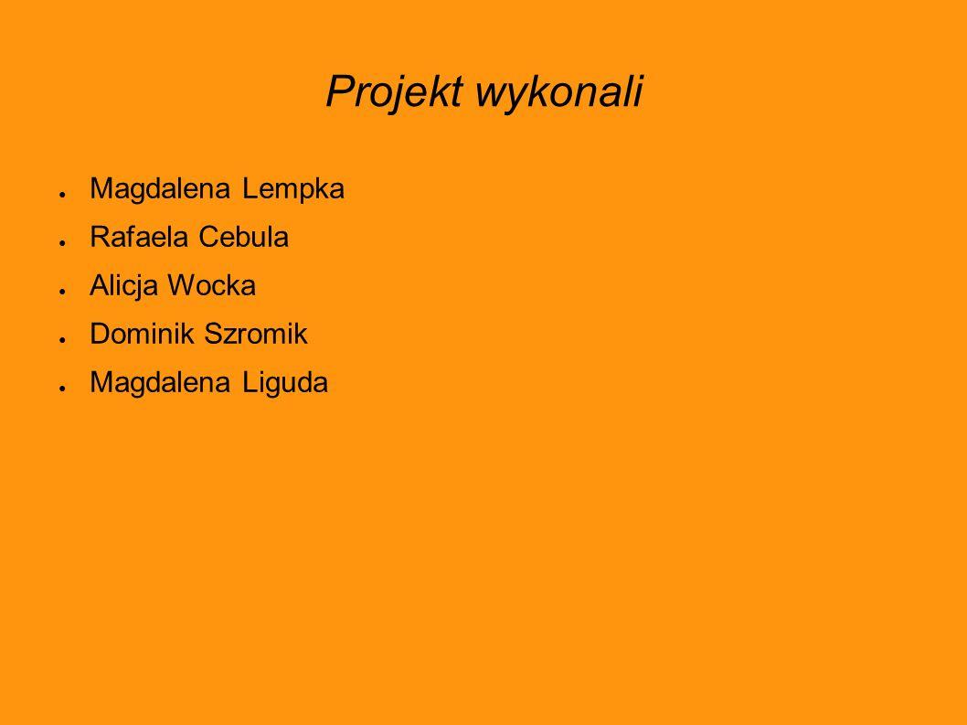 Projekt wykonali ● Magdalena Lempka ● Rafaela Cebula ● Alicja Wocka ● Dominik Szromik ● Magdalena Liguda