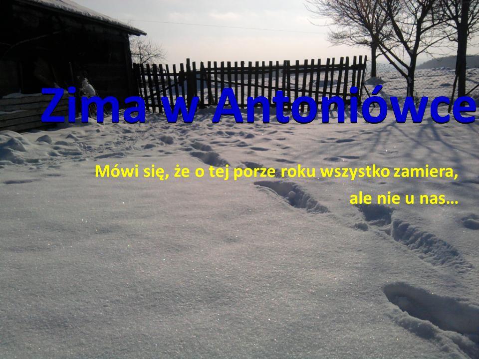 Zima w Antoniówce Mówi się, że o tej porze roku wszystko zamiera, ale nie u nas…
