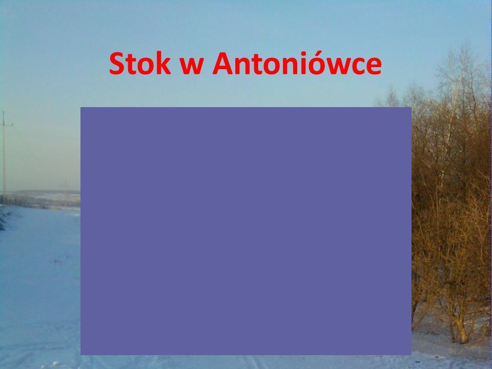 Stok w Antoniówce