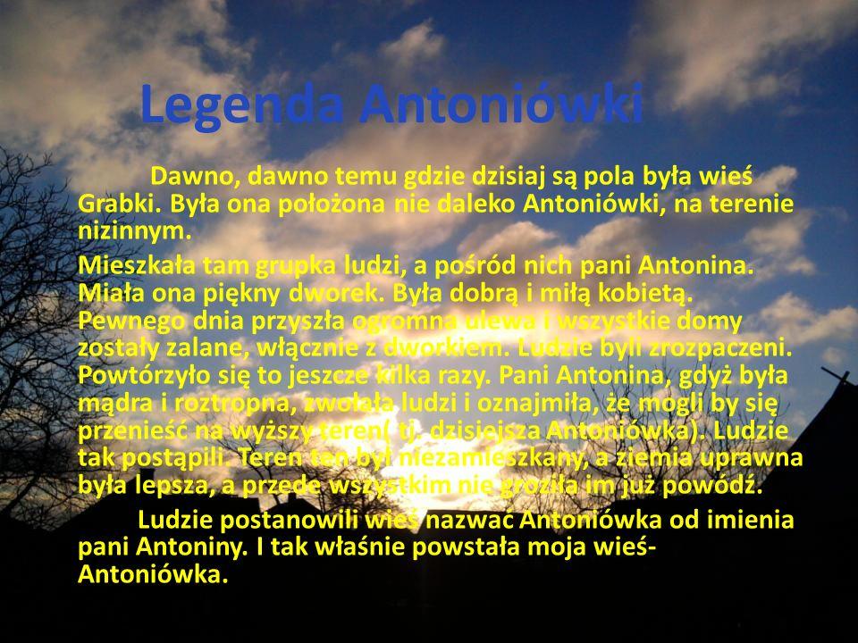 Legenda Antoniówki Dawno, dawno temu gdzie dzisiaj są pola była wieś Grabki.