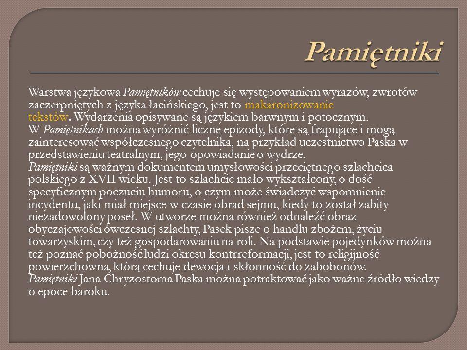 Warstwa językowa Pamiętników cechuje się występowaniem wyrazów, zwrotów zaczerpniętych z języka łacińskiego, jest to makaronizowanie tekstów.