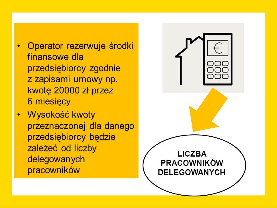 Operator rezerwuje środki finansowe dla przedsiębiorcy zgodnie z zapisami umowy np. kwotę 20000 zł przez 6 miesięcy Wysokość kwoty przeznaczonej dla d