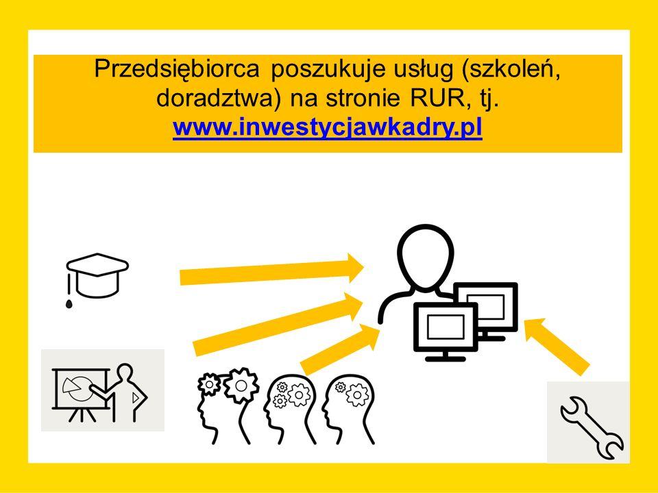 Przedsiębiorca poszukuje usług (szkoleń, doradztwa) na stronie RUR, tj. www.inwestycjawkadry.pl