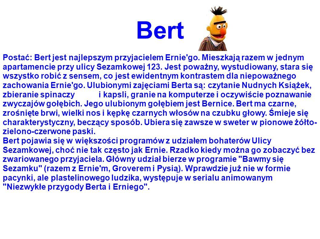 Bert Postać: Bert jest najlepszym przyjacielem Ernie'go. Mieszkają razem w jednym apartamencie przy ulicy Sezamkowej 123. Jest poważny, wystudiowany,