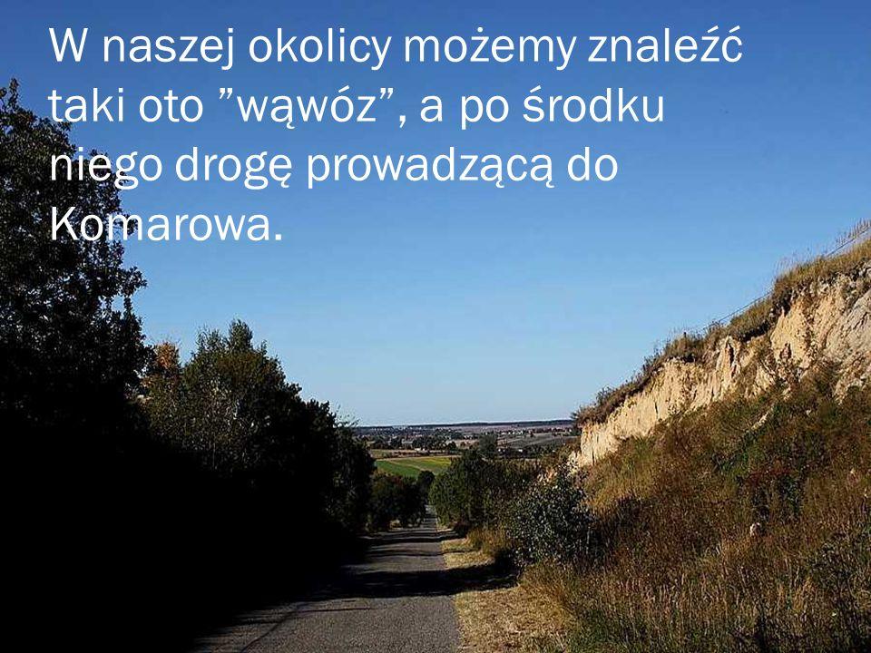 W naszej okolicy możemy znaleźć taki oto wąwóz , a po środku niego drogę prowadzącą do Komarowa.
