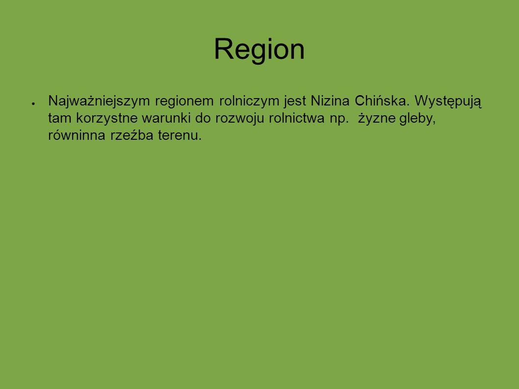 Region ● Najważniejszym regionem rolniczym jest Nizina Chińska. Występują tam korzystne warunki do rozwoju rolnictwa np. żyzne gleby, równinna rzeźba