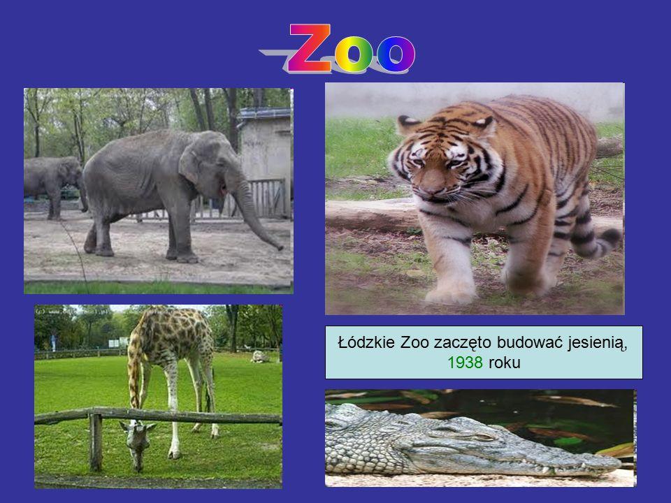 Łódzkie Zoo zaczęto budować jesienią, 1938 roku
