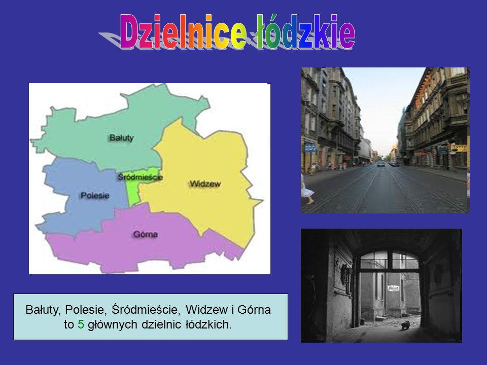 Bałuty, Polesie, Śródmieście, Widzew i Górna to 5 głównych dzielnic łódzkich.