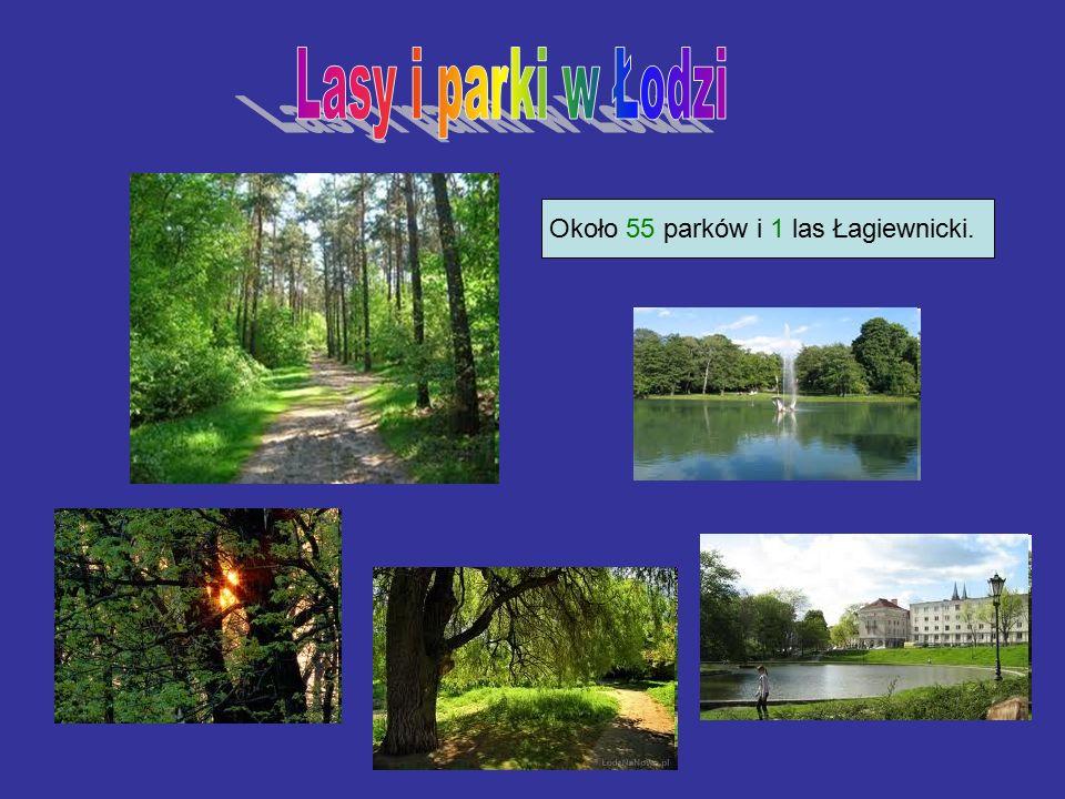 Około 55 parków i 1 las Łagiewnicki.