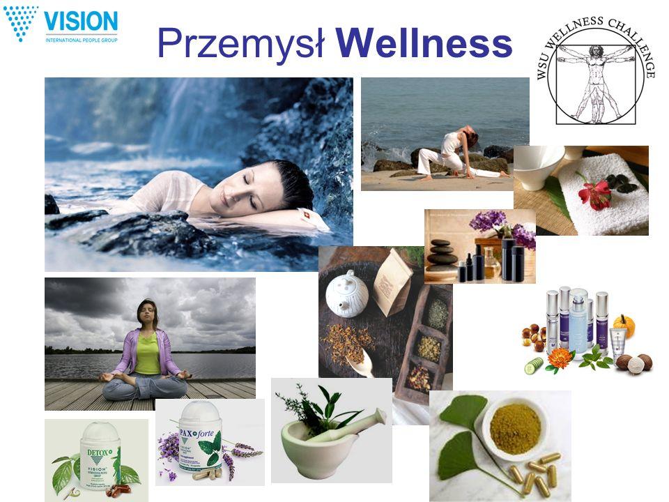 Przemysł Wellness