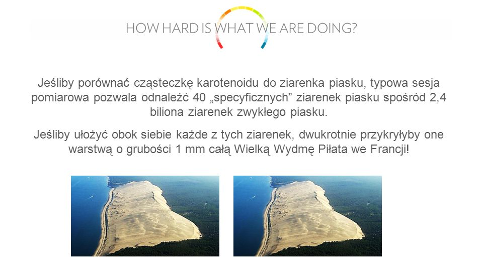 """Jeśliby porównać cząsteczkę karotenoidu do ziarenka piasku, typowa sesja pomiarowa pozwala odnaleźć 40 """"specyficznych ziarenek piasku spośród 2,4 biliona ziarenek zwykłego piasku."""