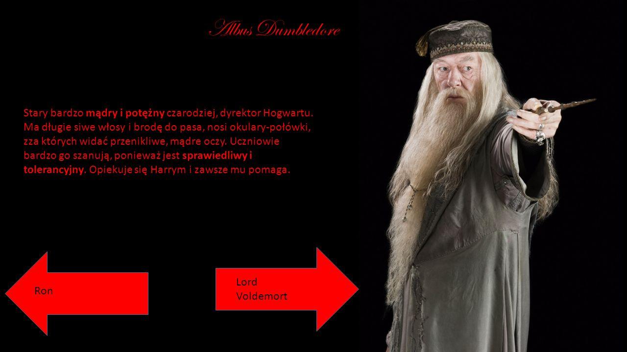 Albus Dumbledore Stary bardzo mądry i potężny czarodziej, dyrektor Hogwartu. Ma długie siwe włosy i brodę do pasa, nosi okulary-połówki, zza których w