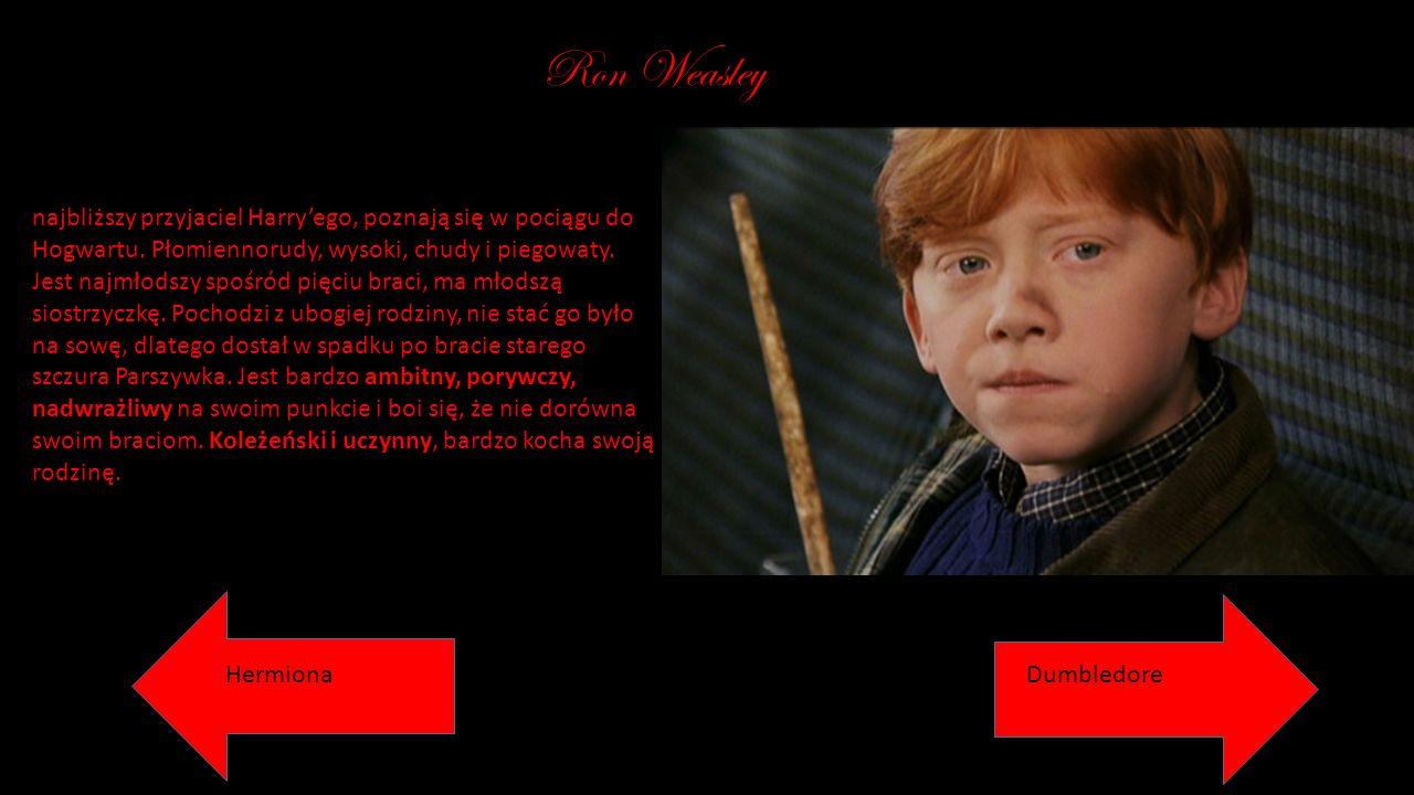 Ron Weasley najbliższy przyjaciel Harry'ego, poznają się w pociągu do Hogwartu. Płomiennorudy, wysoki, chudy i piegowaty. Jest najmłodszy spośród pięc