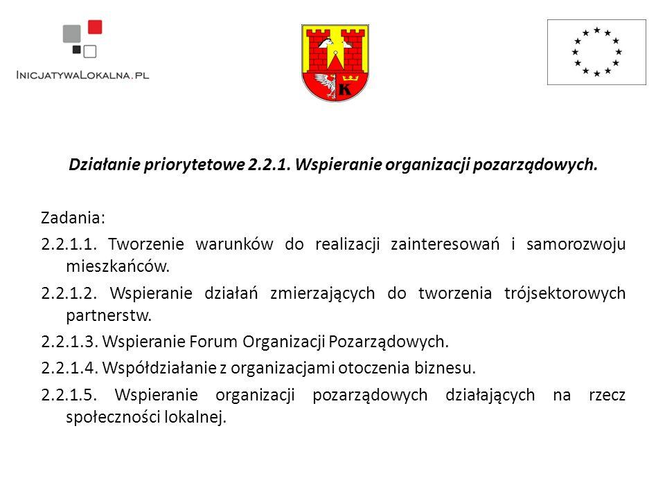 Działanie priorytetowe 2.2.1. Wspieranie organizacji pozarządowych.