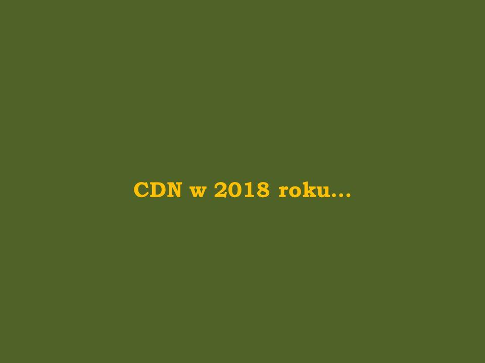 CDN w 2018 roku…